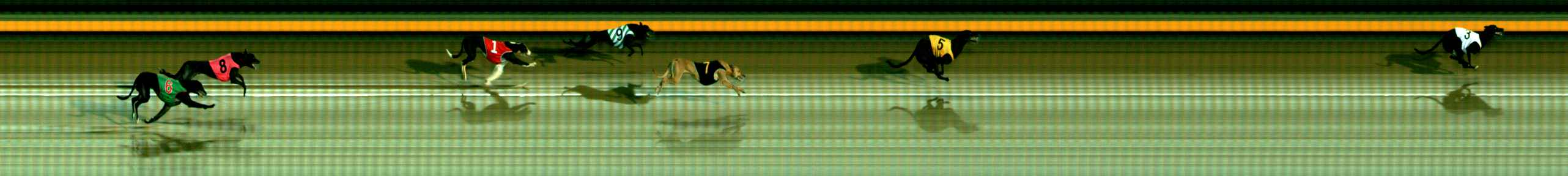 Race result finish photo
