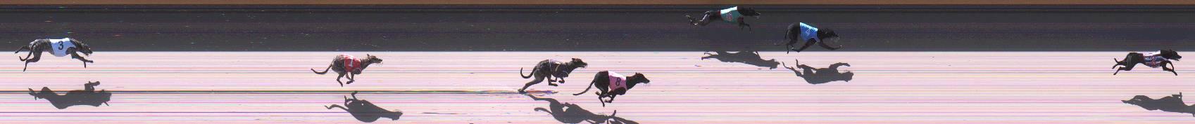 Race result finish photo